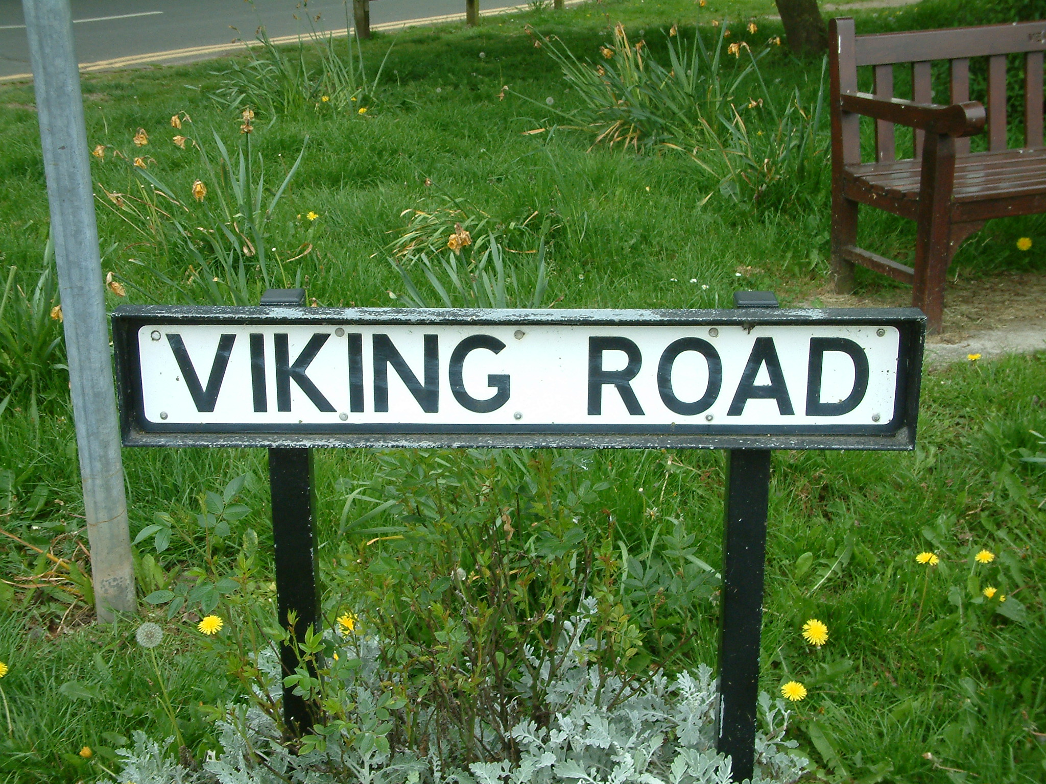 Viking Road Sign