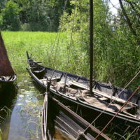 Reconstructed Viking boats at Birka in Sweden