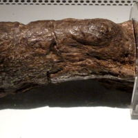 The Lloyds Bank Coprolite