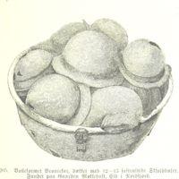 A basket of shield bosses