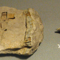 A Mould and its Associated Brooch in the National Museum of Ireland