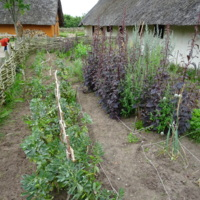 Reconstructed Viking Garden at Ribe VikingCenter