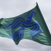 Norse Raven flag